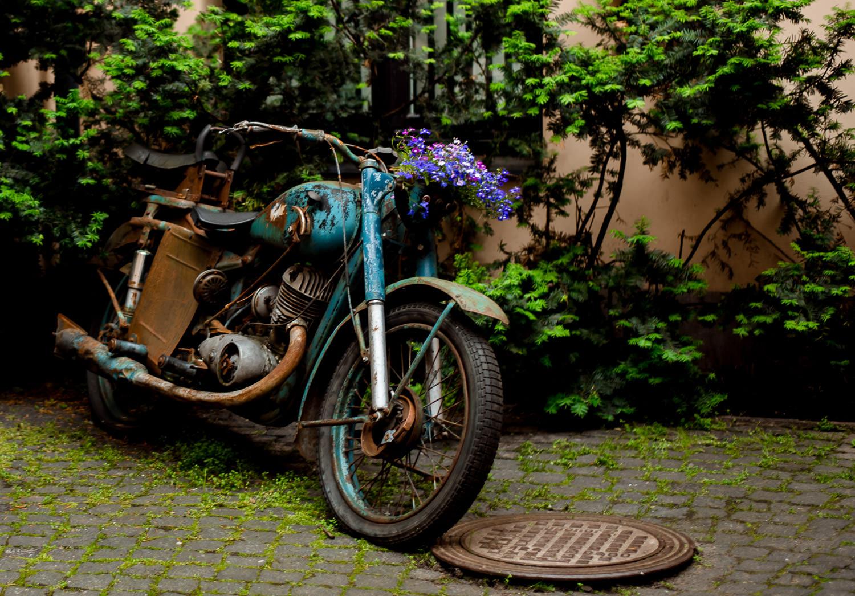 Motorbike flower basket, Riga